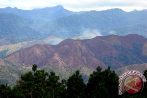 Deforestation in Indonesia increased after moratorium: a study