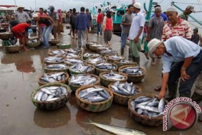 Potensi perikanan Pulau Bacang digarap kembali