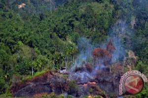 Satellite detects 187 hotspots in C. Kalimantan