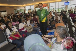 Mudik membuat jumlah penumpang di Bandara Halim naik 60 persen