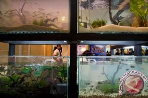 Indonesian Aquaculture 2014 resmi dibuka