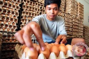 Harga telur ayam dan gula pasir naik jelang Ramadhan