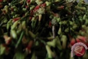 Harga cengkih di Manado capai Rp136.000 per kg