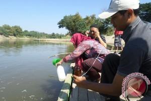 Ini penelitian IPB mengenai pencemaran Danau Lido