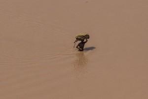 Jumlah korban jiwa akibat banjir di Mozambik jadi 117