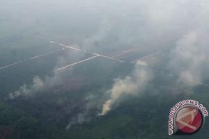 Status darurat asap Riau diperpanjang lagi