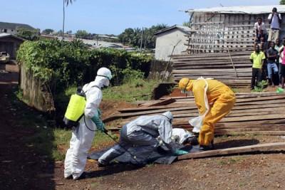 Satu juta orang kelaparan akibat Ebola di Afrika