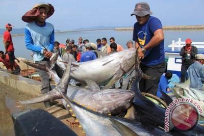 Konferensi tuna Eropa apresiasi langkah tegas Indonesia