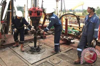 Harga minyak turun setelah pasar saham Shanghai menukik