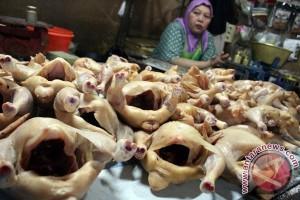 Harga daging ayam ras naik di Jambi