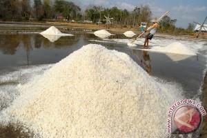 BPPT bertekad lepaskan Indonesia dari 95 persen garam impor