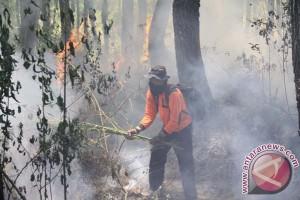 Kebakaran hutan meluas di Gunung Semeru