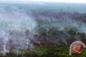 Haze resurfaces in various areas across kalimantan, sumatra