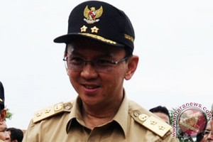 Gubernur DKI resmikan RPTRA Mawar Lebak Bulus