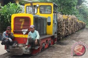 Pembangunan pabrik gula di Sultra terkendala lahan