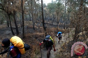 Bencana Asap - Kebakaran di TN Bromo Tengger Semeru 100 ha