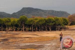 Tiga faktor yang memesona dari pariwisata di Buleleng