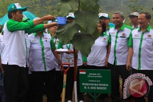 Tree planting movement to support food sovereignty program