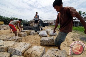 Petani terpukul harga karet pedalaman Barito anjlok