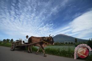 "Kemenpar dukung Kerinci dilintasi ""Tour de Singkarak"""