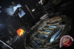 Alat pengasap ikan tanpa asap