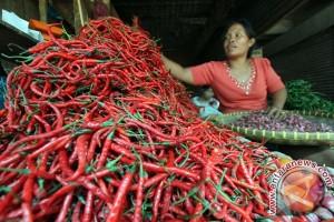 Harga cabai merah turun jadi Rp25.000/kilogram