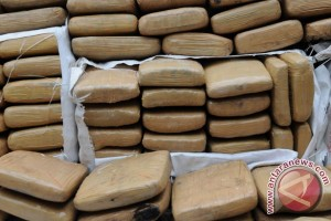 TNI amankan dua kilogram ganja di perbatasan RI-PNG