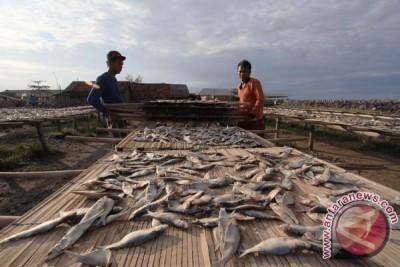 Produksi Ikan Asin Meningkat