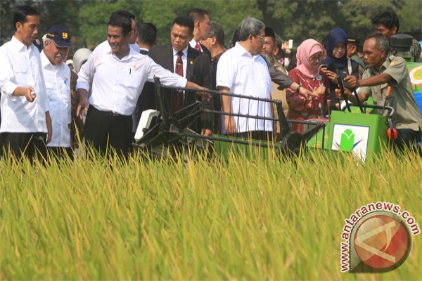 Indonesia can achieve rice self-sufficiency this year
