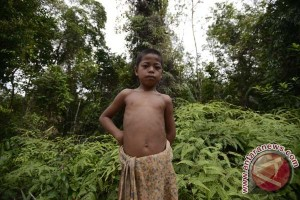 Earth Wire -- Some 48.8 million population of Indonesia live in forest