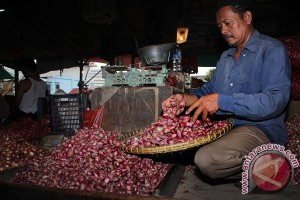 Indonesia`s red onion production predicted to reach 1.14 million tons