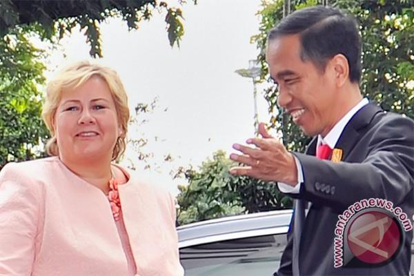 RI-Norwegia saling dukung jadi anggota DK PBB