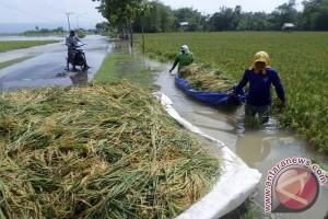 Banjir di hilir Jatim lebih lambat surut