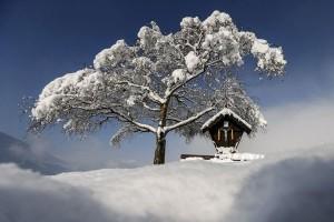 Suhu membekukan Eropa renggut lebih banyak nyawa