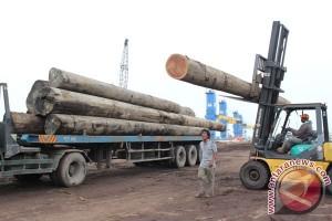 LSM sebut 50 persen ekspor kayu Indonesia ilegal secara administrasi