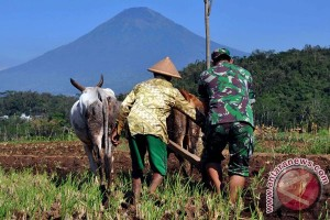 DPR minta data keberhasilan kemitraan TNI-Kementerian Pertanian
