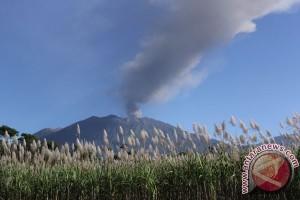Status siaga Gunung Raung tidak pengaruhi penerbangan Banyuwangi-Surabaya