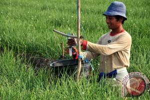 Kementan: Indonesia terancam kehilangan petani