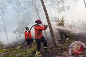 Musi Banyuasin status tanggap darurat bencana kebakaran