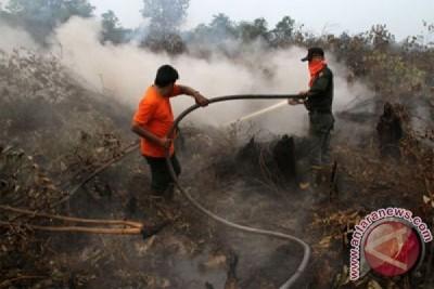 Pemadaman Kebakaran Hutan Riau