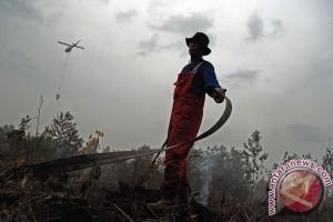 Polisi tangkap dua pembakar lahan di Kampar