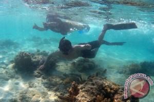 Peneliti: kondisi terumbu karang Mentawai memburuk
