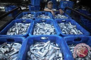 Gorontalo Utara akan genjot produksi ikan tuna