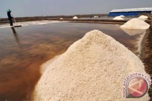 Harga tak kunjung membaik petani garam merugi