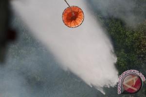 BPBD Jambi: 319 bom air dijatuhkan untuk padamkan api