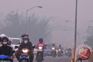 Pakar: waspadai dampak hipoksia terkait kabut asap