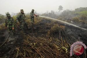 Jambi perpanjang status siaga darurat kebakaran hutan