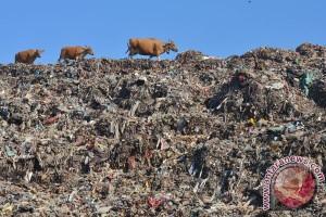 Krisis sampah kembali landa Lebanon