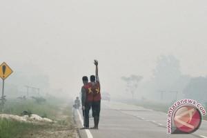 Tujuh hektar lahan terbakar Siak berhasil dipadamkan