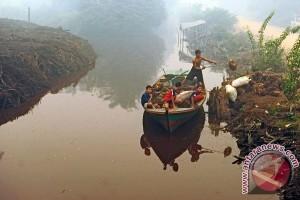 WWF Indonesia siapkan 70 sekat kanal di Jambi